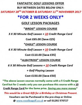 2 weeks only offer